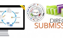 3000-manual-directories-submission-seo-prince