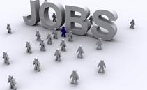 job-pic3