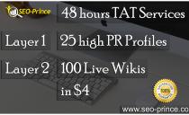 48 hour 25 high PR Profiles